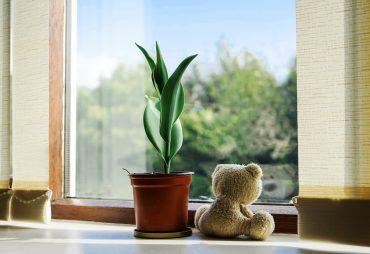 sleep environment air quality
